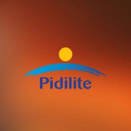 Dealer Of Pidilite In Chandigarh Mohali